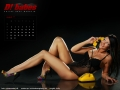 d-kalender_holly