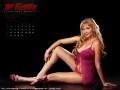 d-kalender_randi