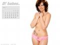 d-kalender_helle